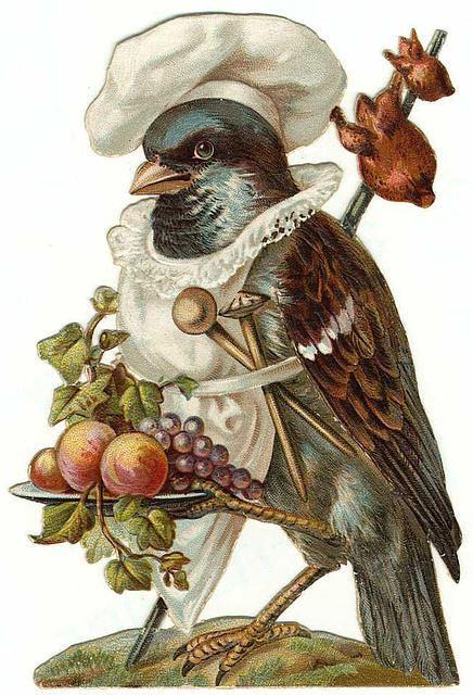 Birds143