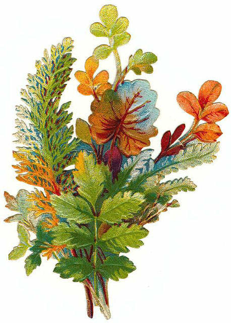Flowers129