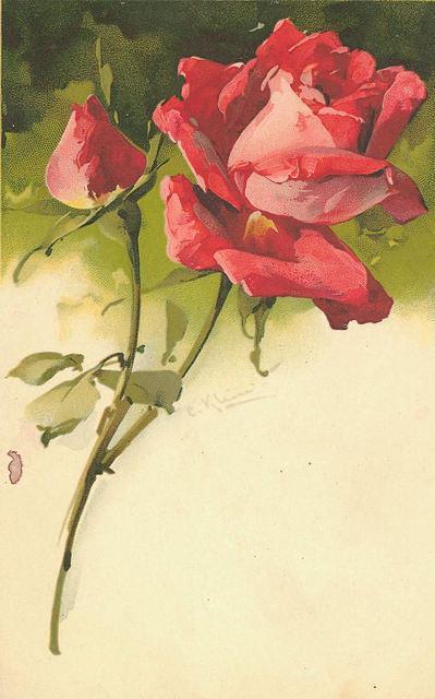 Flowers149