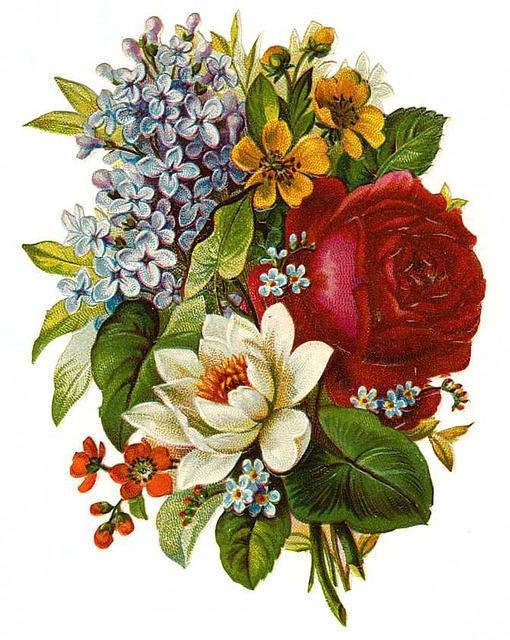Flowers162