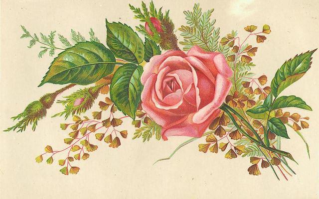 Flowers176