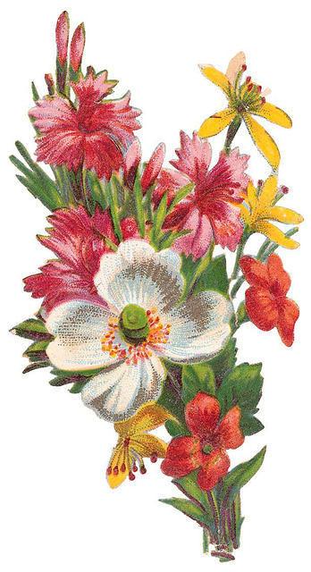 Flowers268