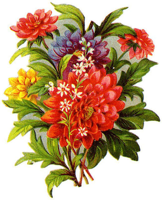 Flowers330