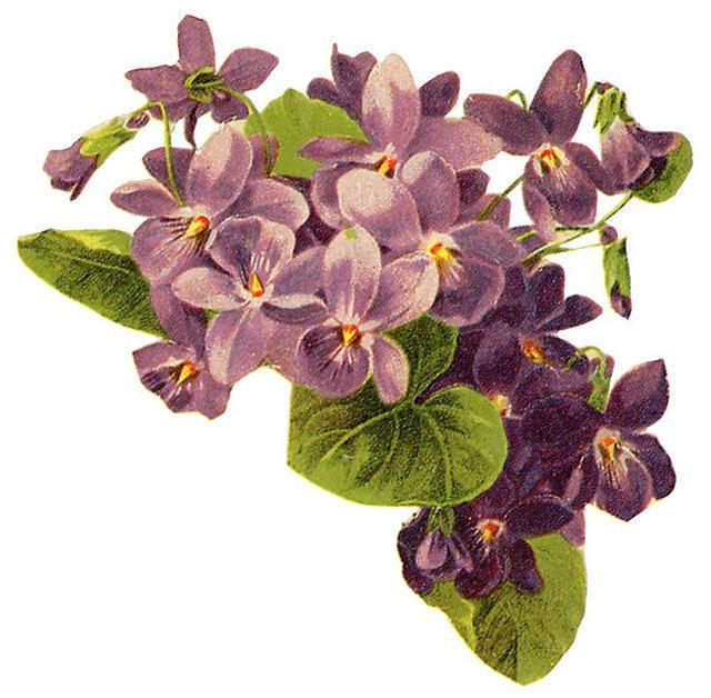 Flowers450