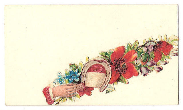 Flowers678