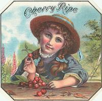 Vintage Ads & Labels (227)